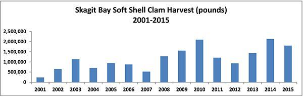 Skagit Bay Production Data 2001to 2015