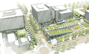 Campus Redevelopment Drawing