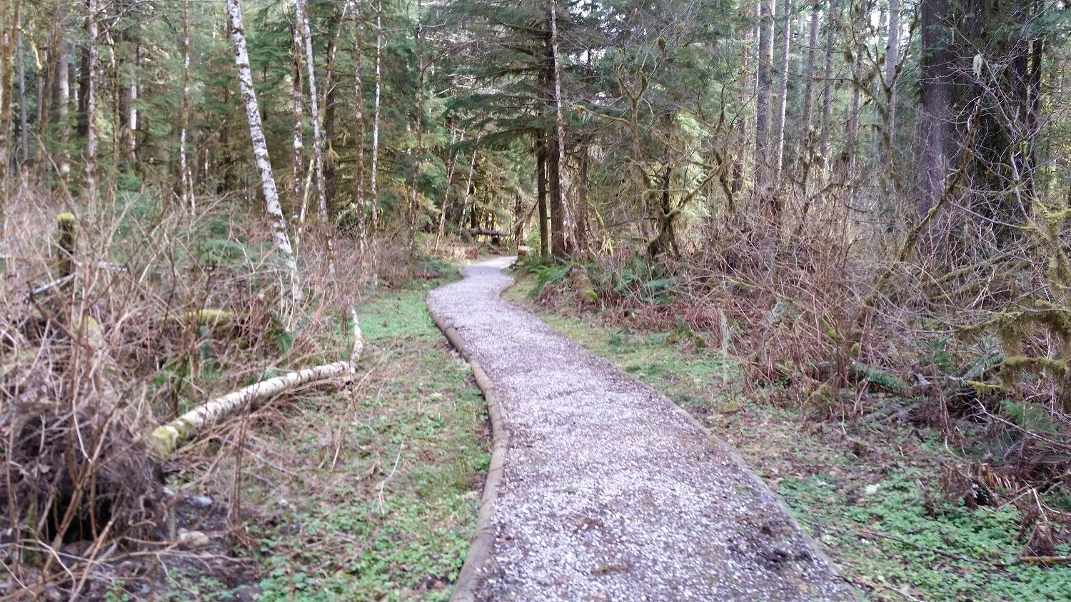 Old Sauk Trail